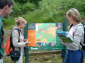Marketing Strategy for Afan Forest Park, Wales Picture